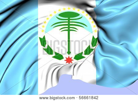 Flag Of Neuquen