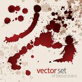 Splattered blood stains grunge design elements wine blots poster
