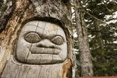Carved totem face on a tree in the forest poster