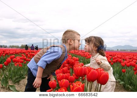 Kissing Kids in the Tulip Fields