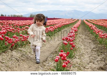 Running in a Tulip Field