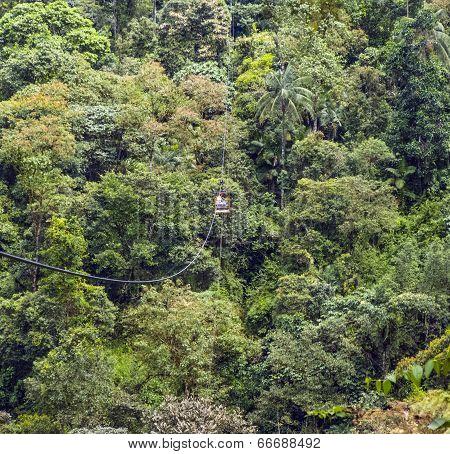 Rope Bridge At Rio Mindo, Western Ecuador, River Running Through Cloudforest At 1,400M Elevation.