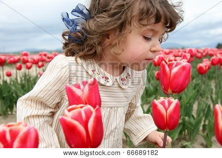 Adorable Girl In Tulip Field
