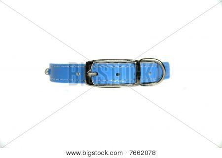 leather animal collar isolated on white, high resolution poster
