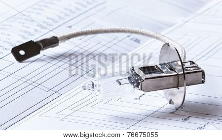 Halogen Lamp And Electric Circuit
