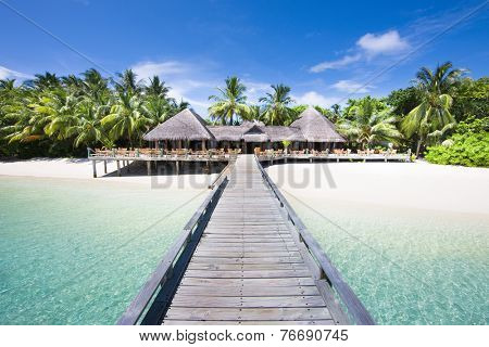 Tropical Beach with Coconut Palm Trees, panoramic view. Maldives.