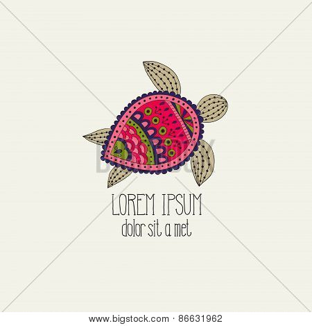 Turtle on a light background