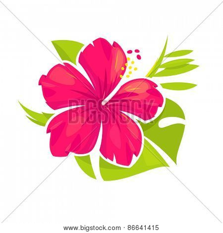 Hibiscus flower and palm leaves