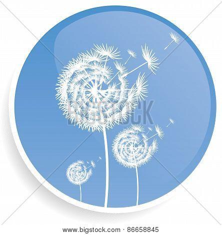 Dandelion blue button design illustration