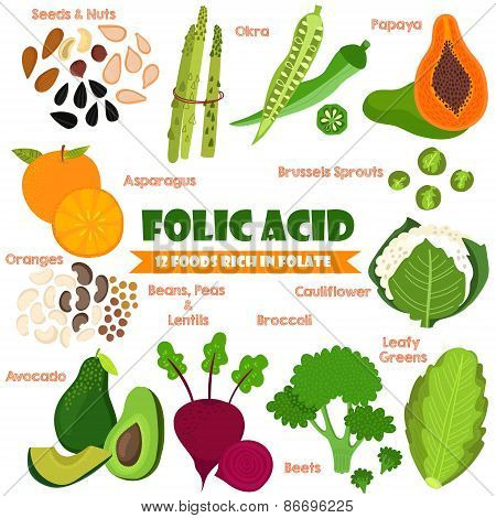 Vitamins And Minerals Foods Illustrator Set 14.vector Set Of 12 Foods Rich In Folate. Folic Acid-nut