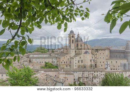 Urbino view
