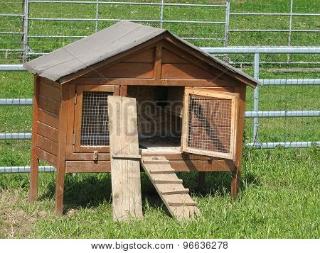 Box for chickens