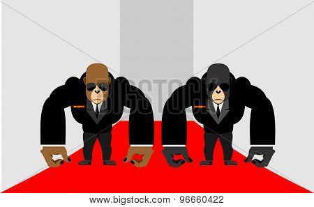 Security Guards Of A Gorilla. Big Bodyguards Primates In Costumes. Vector Illustration  Monkey