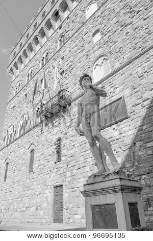 Michelangelo's David in the Piazza della Signoria in Florence Tuscany Italy poster