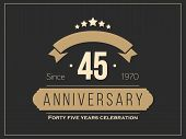Forty five years anniversary celebration logotype. 45th anniversary logo. Vector illustration. poster