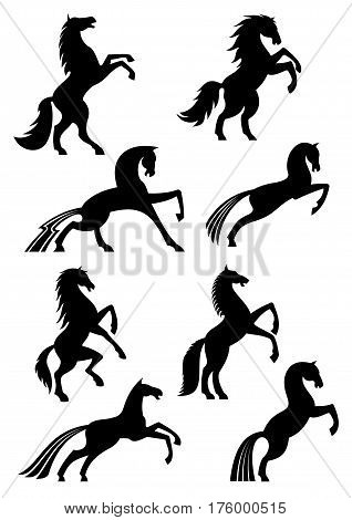 Horses icons or silhouettes of black heraldic equine emblems. Vector mustang racing, running or rearing and jumping or stomping hoof for horse sport races badge, equestrian rides or exhibition poster