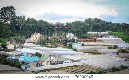 Landscape Of Countryside In Dalat, Vietnam