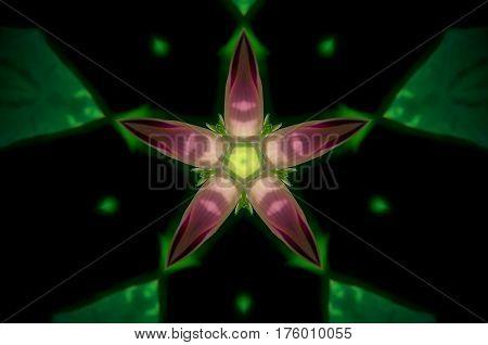 Abstract Green And Purple Mandala