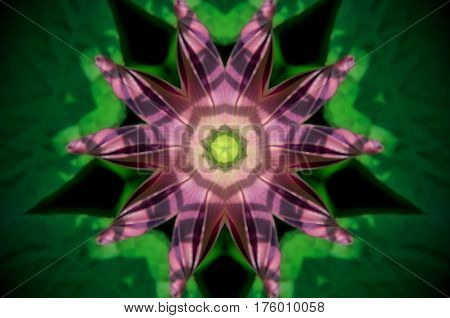 Abstract Green And Purple Mandala