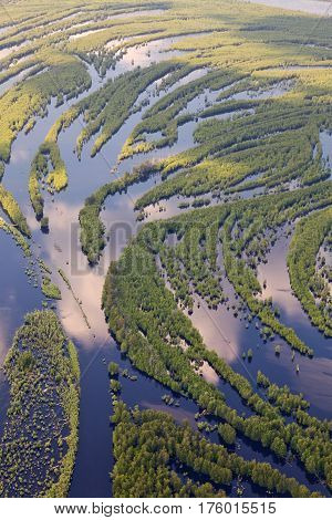 Aerial view flooded forest plains in summer.