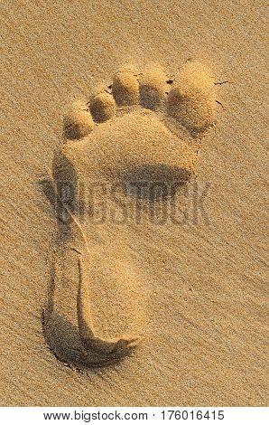 imprint of human feet on sandy beach
