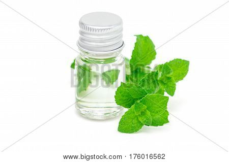 Peppermint essential oil in glass and fresh mint on background isolated on white