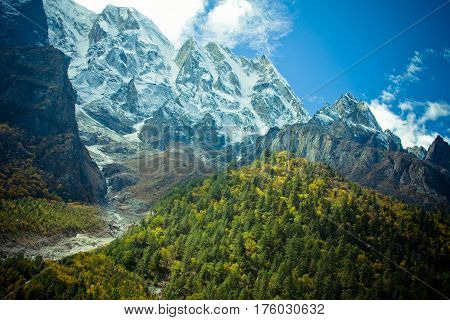 India Forest in valley Himalayas mountains with sky