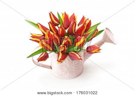 Watering pot with a bouquet of tulips isolated on white background