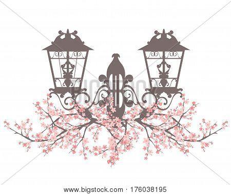 elegant vintage style street light among blooming sakura branches - spring season urban decor vector design