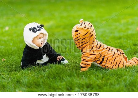 Cute Baby Boys Wearing A Panda Bear Suit And Tiger Costume