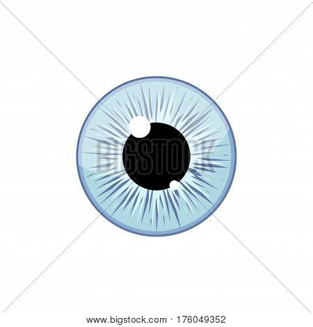 Human light blue eyeball iris pupil isolated on white background. Eye Vector Illustration