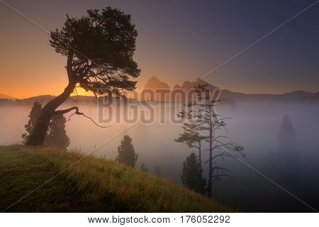 Misty scenery in Alpe di Siusi or Seiser Alm at dawn. Long exposure photo on idyllic landscape - Dolomites mountain range Italy.