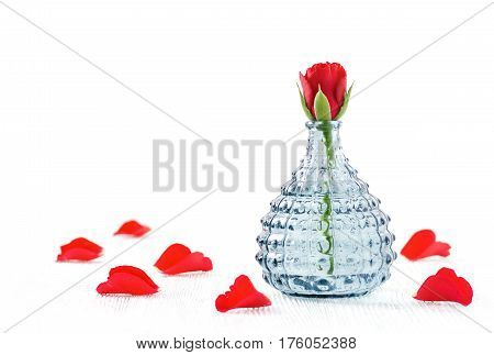 aromatherapy spa and wellness rose and petals on white background