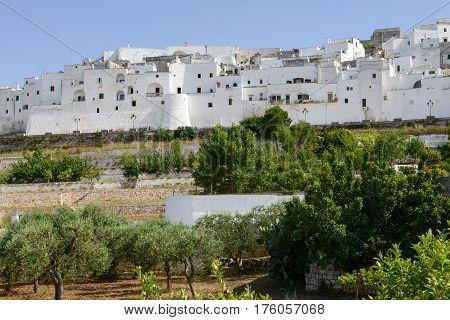 Ostuni The White Town Of Puglia