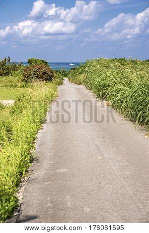 Road through grass field toward fishing boat on sea in Ishigaki island