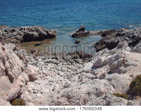 En el mar azul de mallorca, paseando feliz