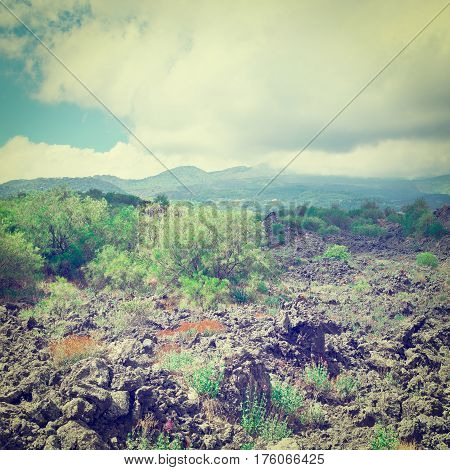 Congealed Black Lava on the Slopes of Mount Etna in Sicily Instagram Effect