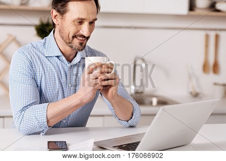 Involved in the process of searching . Satisfied attentive involved businessman sitting at home and drinking cup of tea while enjoying freelance responsibilities and using laptop