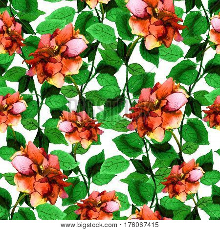 Seamless floral pattern with red rose flowers. Watercolor