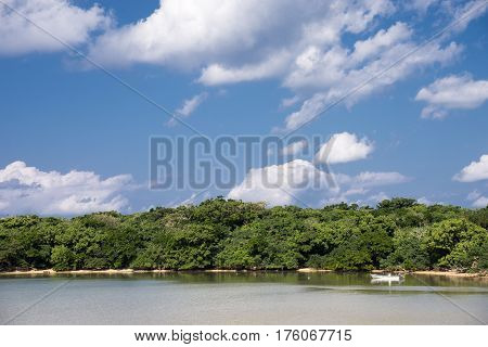 Sea on boat and green jungle under blue sky with clouds in Ishigaki island