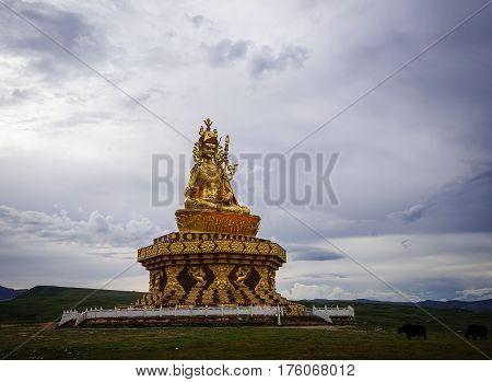 Big Buddha On The Grass Hill At Yarchen Gar