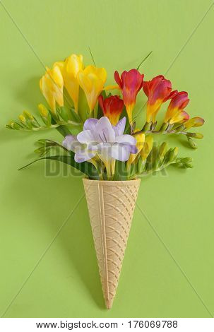 Freesias flowers in ice cream waffles