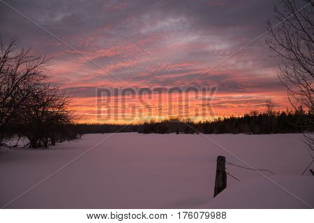 Bright winter sunset over snowy farm pasture with fencepost with fresh snow on the ground.