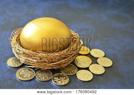 Golden egg in nest surrounded by coins