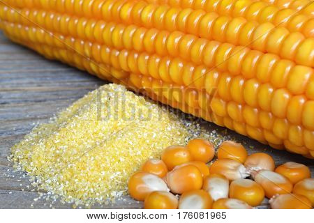 Cornmeal, corn seeds and corn cob on wooden background