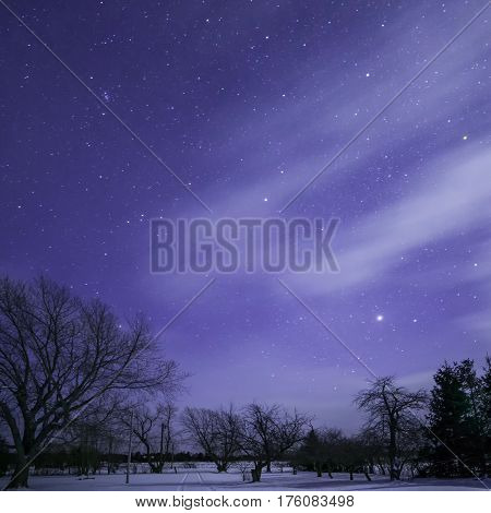 Moonlit Stars, Trees And Track With Clouds