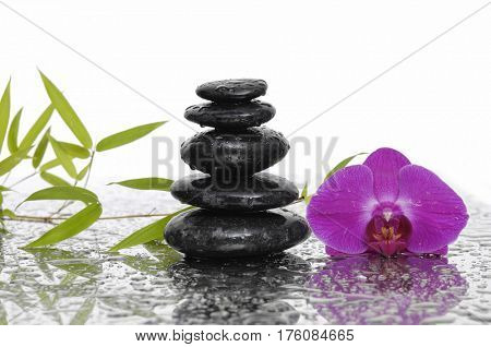 stacked black stones and bamboo leaf with red orchid on wet background