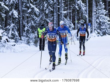UMEA, SWEDEN ON JANUARY 16. SM - Skiathlon, H 21 in cold conditions. The Swedish Championship on January 16, 2014 in Umea, Sweden. Unidentified competitors in the race. Editorial use!