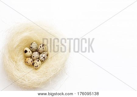Easter Quail Eggs In A Nest On A White Background.