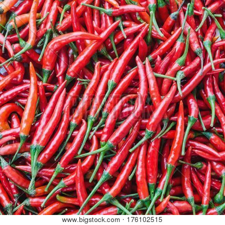 Small red chili peppers  in market. Asian food concept.